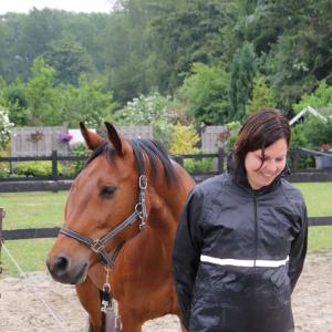 Bedrijstraining paardencoaching Cosis